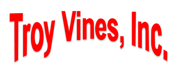 Troy Vines is founded
